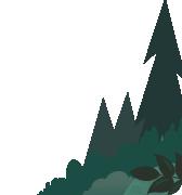 Ilustración de árbol de hoja perenne